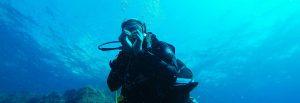 Slider duiken brabant&sealanddiving